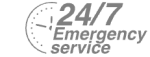 24/7 Emergency Service Pest Control in Thornton Heath, Broad Green, CR7. Call Now! 020 8166 9746